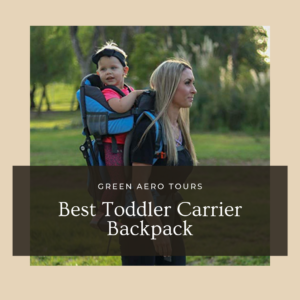 Best Toddler Carrier Backpack